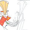 Physiologie des ATM