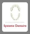 Système dentaire